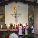 The Bishop celebrates Palm Sunday Mass photo album thumbnail 1